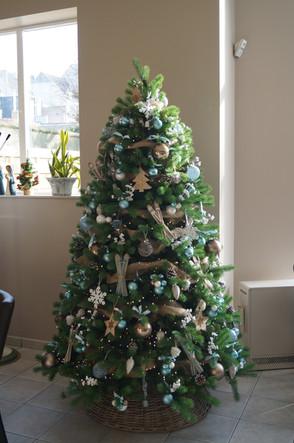 Kerstboom Edenhof Blankenberge