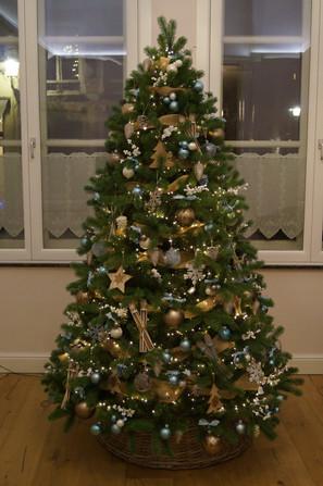 Kerstboom privé