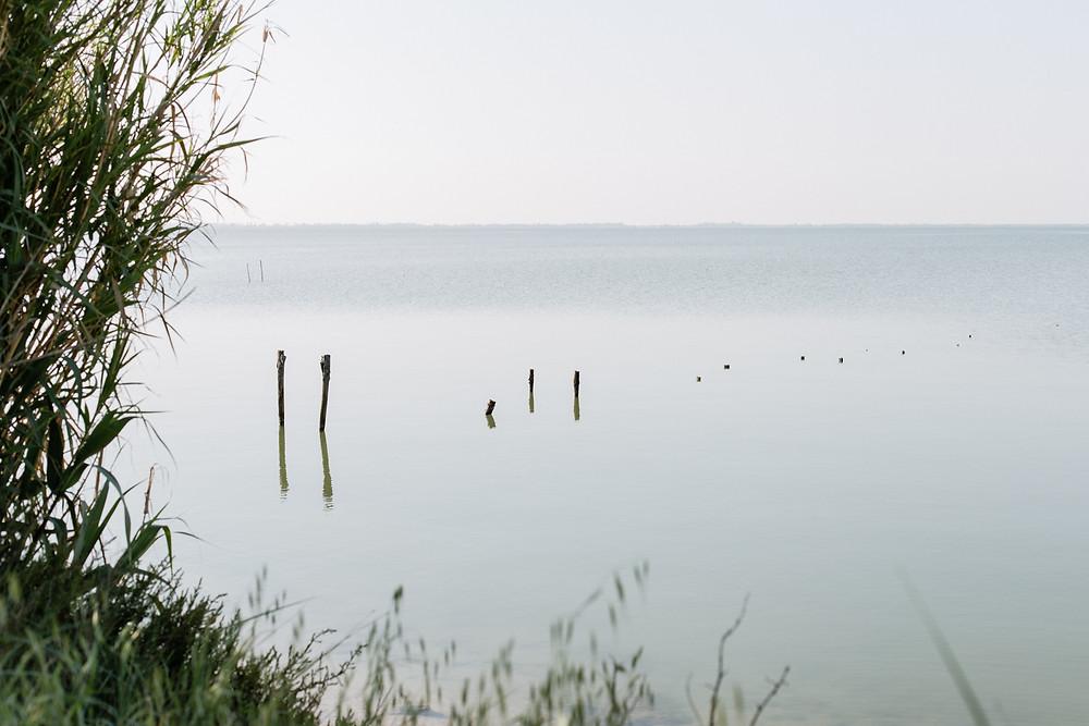 les moments d'où - photographie paysage en camargue