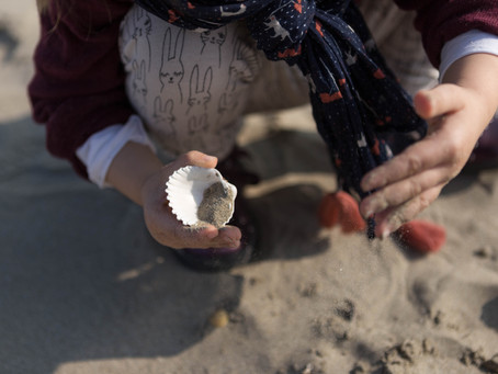 Un coquillage, du sable doux...