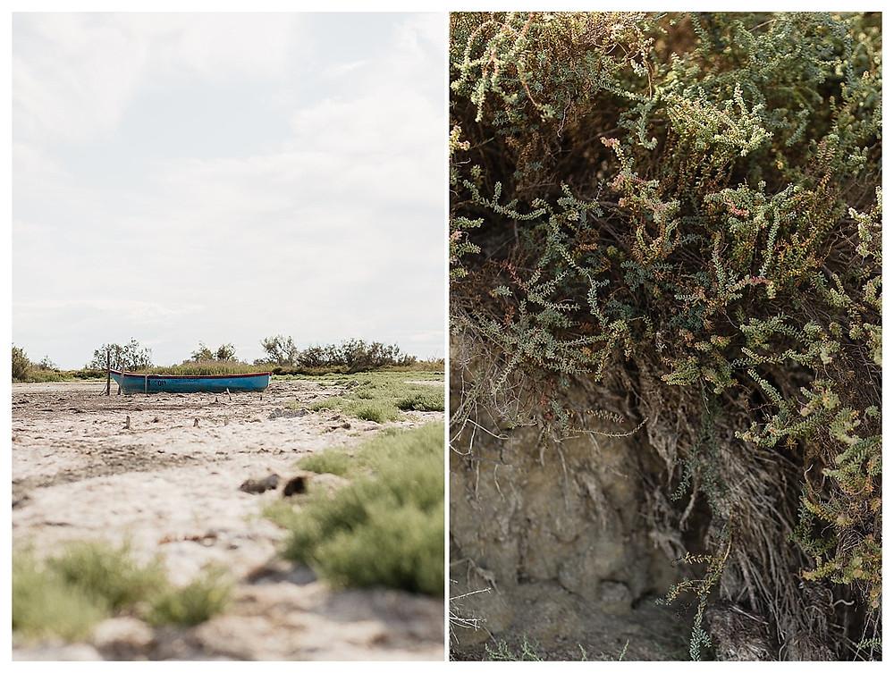 les-moments-d-ou-photographe-evjf-camargue-etang-vaccares-détails-vegetation