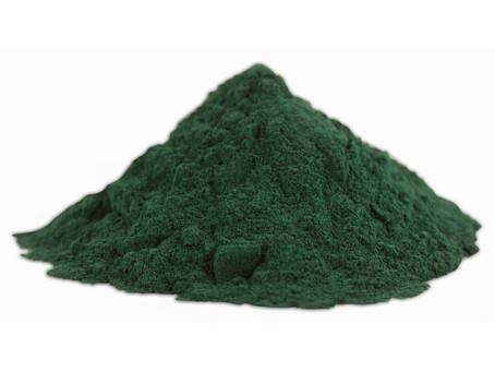 Spirulina l'alga azzurra ricca di proteine e omega 3