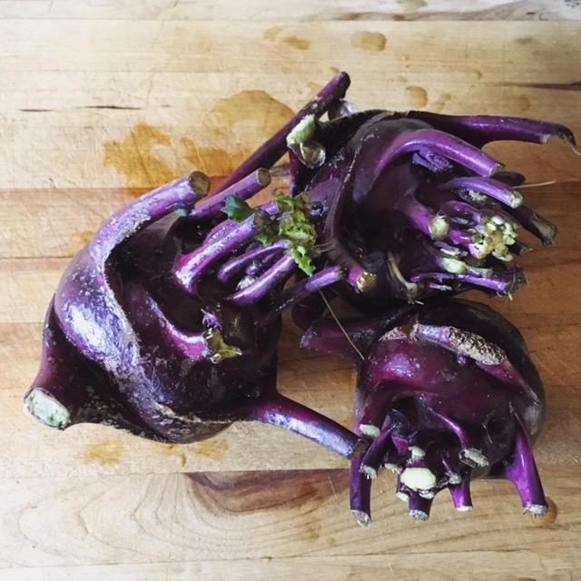 kohlrabi recipes