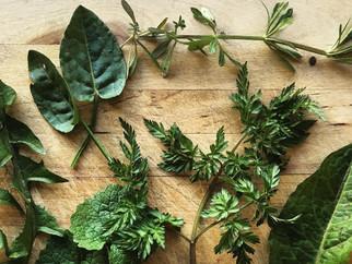 Horta: Greek (wild) greens