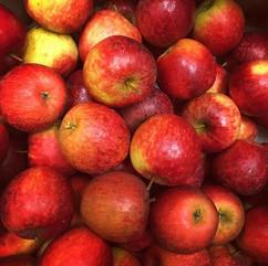 red apples.jpg