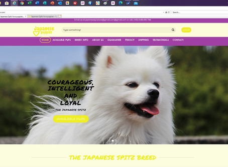 Warning Japanese Spitz Buyers Scam Site
