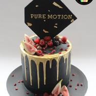 PureMotion.jpg