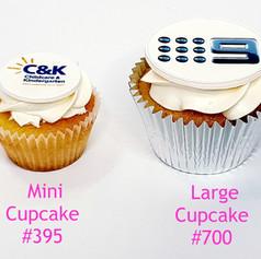 Mini vs Large