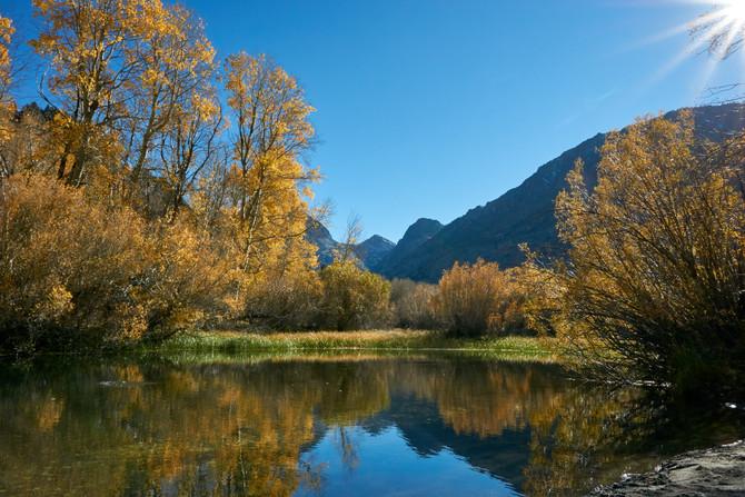 Goldener Herbst in der Sierra Nevada