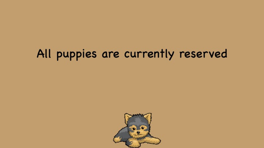 puppies sold.jpg