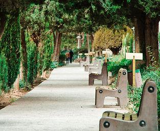 benches-environment-flower-983436.jpg