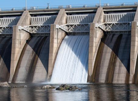 Dam Guardian