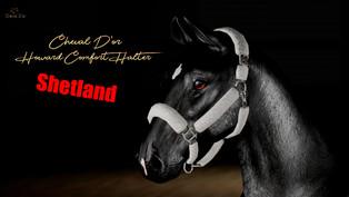 Cheval D'or - Howard Comfort Halter