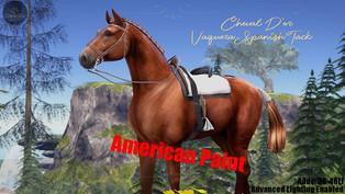 Cheval D'or - Vaquero Spanish Tack Set