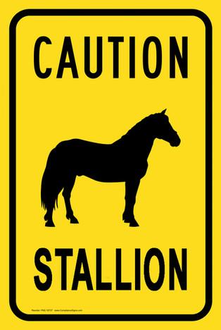 EITSHEKS CREATION - Caution Stallion Sign
