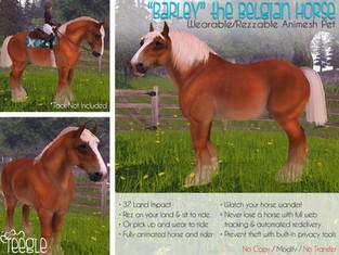 """Barley"" the Belgian Horse"