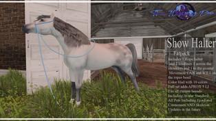 The Flying Pony - Show Halter