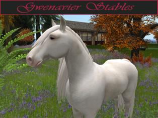 Gwenavier Stables - Skins