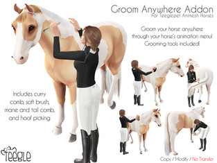 Teeglepet Groom Anywhere Addon