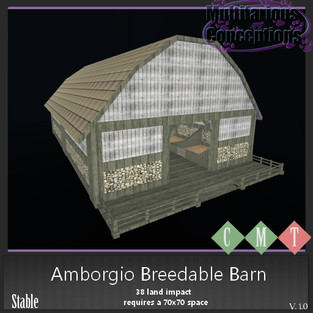 Multifarious Conceptions - Amborgio Barn