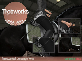 [Trotworks] - Dressage Whip
