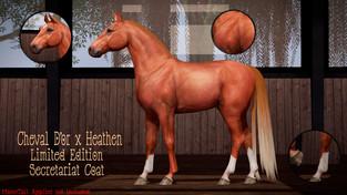 Cheval D'or X Heathen - Skins