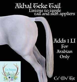 En Pointe - Akhal Teke Tail