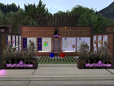 MultifariousConceptionsEventBooth.jpg