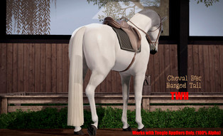 Cheval D'or - Banged Horse Tail
