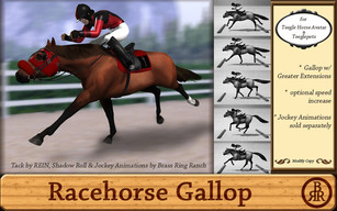 BRR - Racehorse Gallop Animations