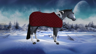 D'Andra's This and That - Quilted Blanket for Teeglepets