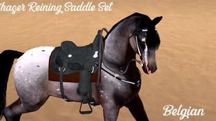 The Flying Pony - Chaser Reining Saddle Set