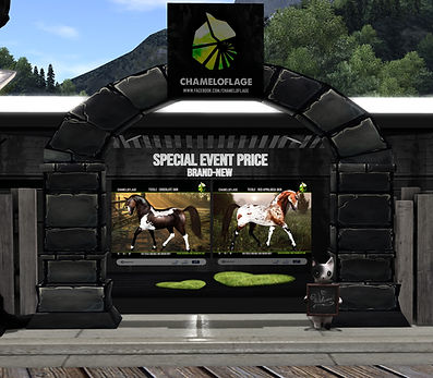ChameloflageEventBooth.jpg