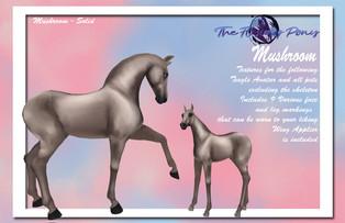 .:The Flying Pony:. Coat Textures