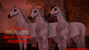Cheval D'or & [. HEATHEN .] - Day of The Dead Collection