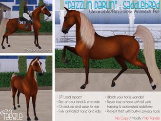 """Dazzlin Darlin"" the Saddlebred Horse"