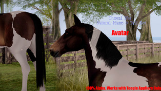 Cheval D'or - Natural Mane & Tail