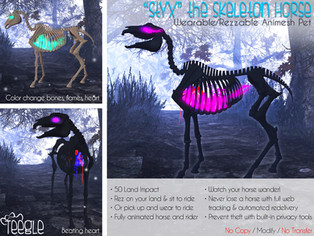 """Styx"" the Skeleton Horse"