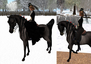 Amethyst's Accessories - TeeglePet Sidesaddle Legs and Skirt Attachments