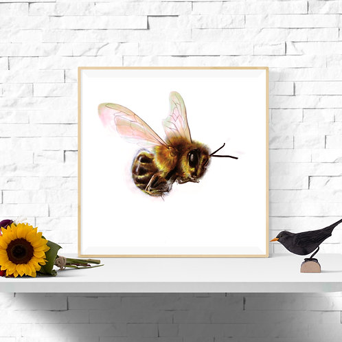 Let's BEE friends, Giclee Art Print from £11.99