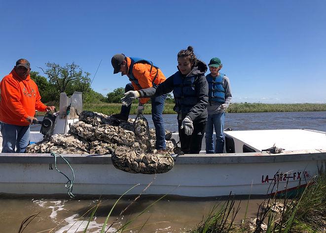 oystershelldeployment.jpg