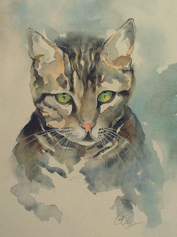 Remus_portrait.jpg