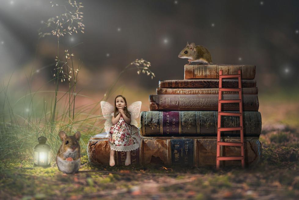fairy-sofia.jpg