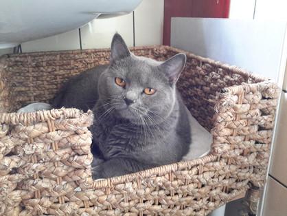 Haribo né le 13 Mars 2012