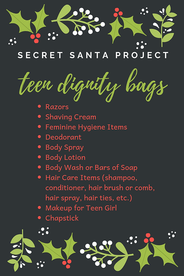 SSPteendignitybags.png