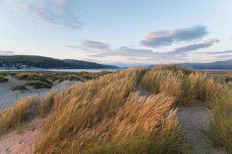 Ynyslas Sand Dunes - Wales (3).jpg