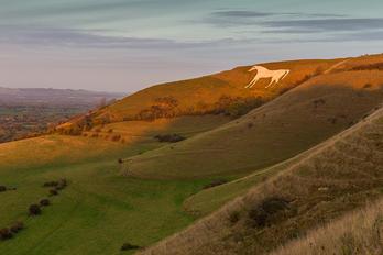 Westbury White Horse - Wiltshire.jpg
