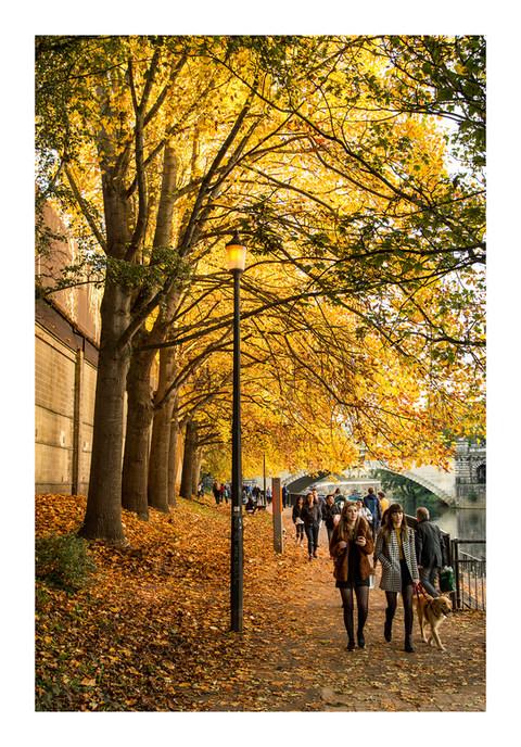Riverside Walk Autumn - Bath - October 2