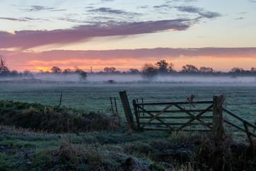 Glastonbury - Somerset Levels - Frosty morning, Somerset UK