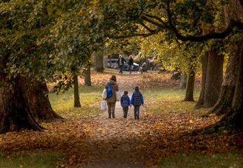 Victoria Park Autumn Avenues - Bath.jpg